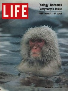 Lifejan301970